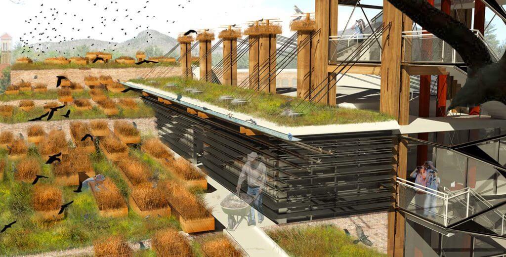 render with lots of vegetation